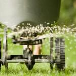 Sejanje-trave-rasturivac